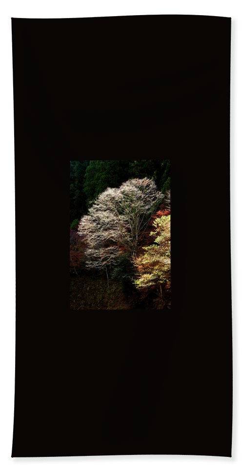 Trees Beach Towel featuring the photograph Trees In Japan 11 by George Cabig