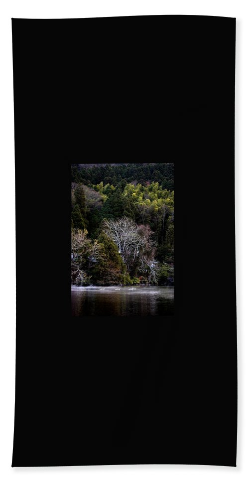Landscape Beach Towel featuring the photograph Trees In Japan 2 by George Cabig