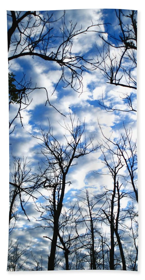 Trees Blue Sky Clouds White Puffy Landscape Photography Photograph Art Beach Towel featuring the photograph Trees In The Sky by Shari Jardina