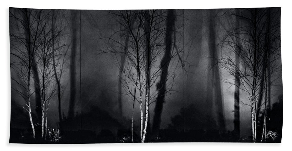 Birch Beach Towel featuring the photograph Tri-birch In Monochrome by James Aiken
