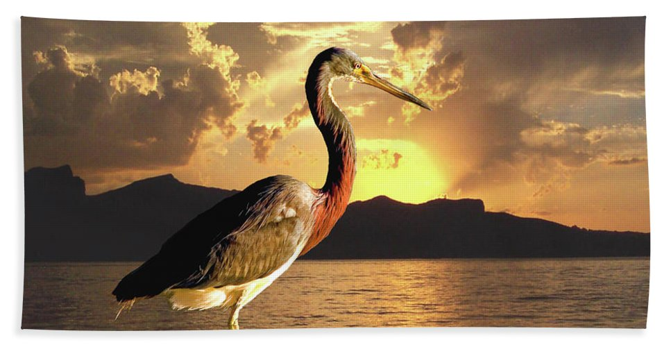 Tricolored Heron Beach Towel featuring the photograph Tricolored Heron At Sunset by David Salter