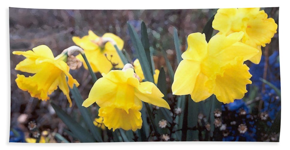 Flowes Beach Towel featuring the photograph Trumpets Of Spring by Steve Karol