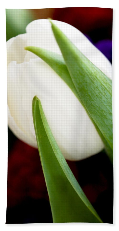 Floral Beach Towel featuring the photograph Tulip Arrangement 4 by Marilyn Hunt