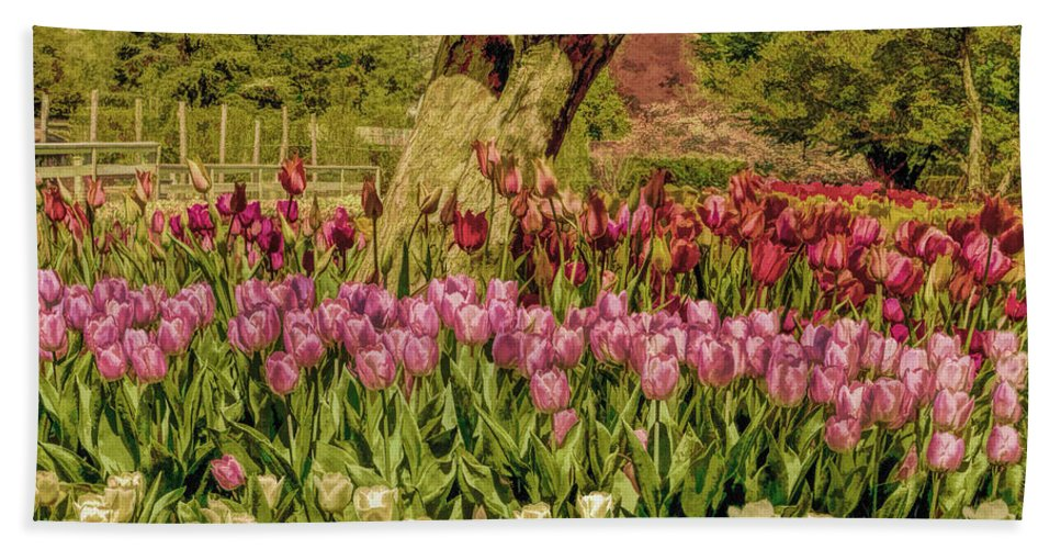 Recent Beach Towel featuring the photograph Tulip Bed At Longwood Gardens In Pa by Geraldine Scull