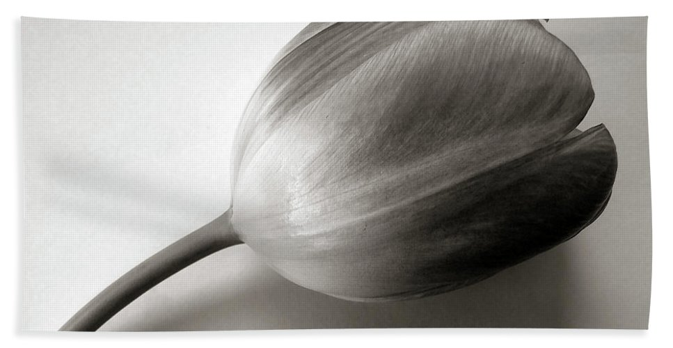 Tulip Beach Towel featuring the photograph Tulip Black And White by Nina Ficur Feenan