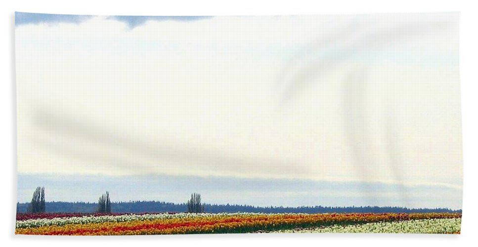 Agriculture Beach Towel featuring the photograph Tulip Town 13 by Will Borden