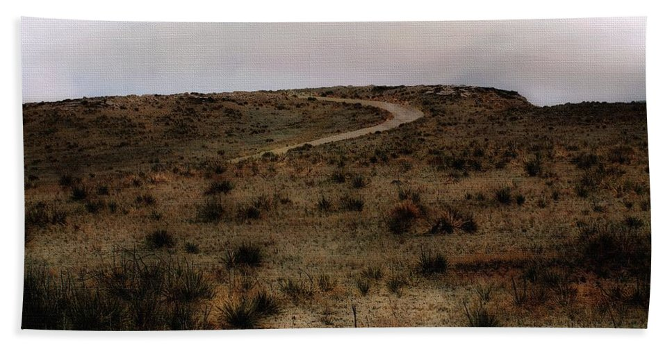 Colorado Beach Towel featuring the painting Twilight Grasslands by RC DeWinter