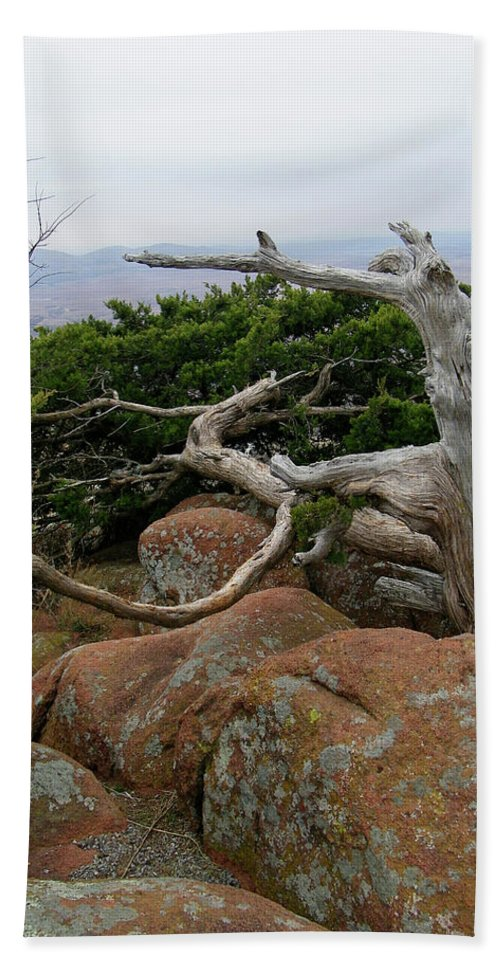 Wichita Mountains Beach Towel featuring the photograph Twisted View by Gale Cochran-Smith