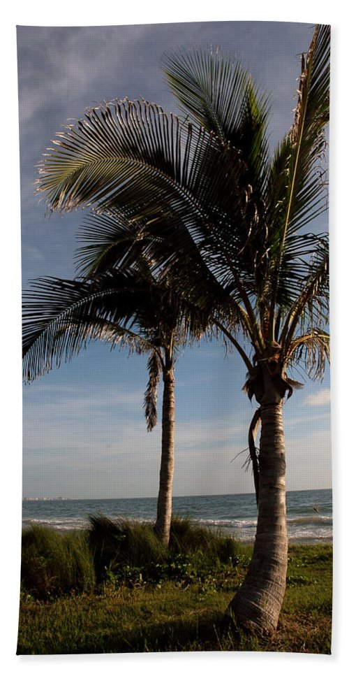 Palms Beach Towel featuring the photograph Two Palms And The Gulf Of Mexico by Susanne Van Hulst