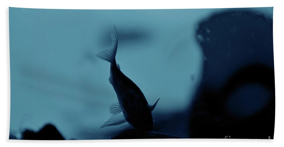 Underwater Beach Towel featuring the photograph Underwater by Ilaria Andreucci