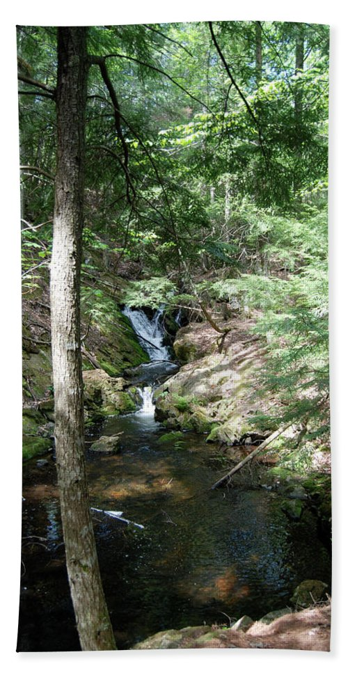 Michigan Beach Towel featuring the photograph Upper Adler Falls 4405 by Michael Peychich