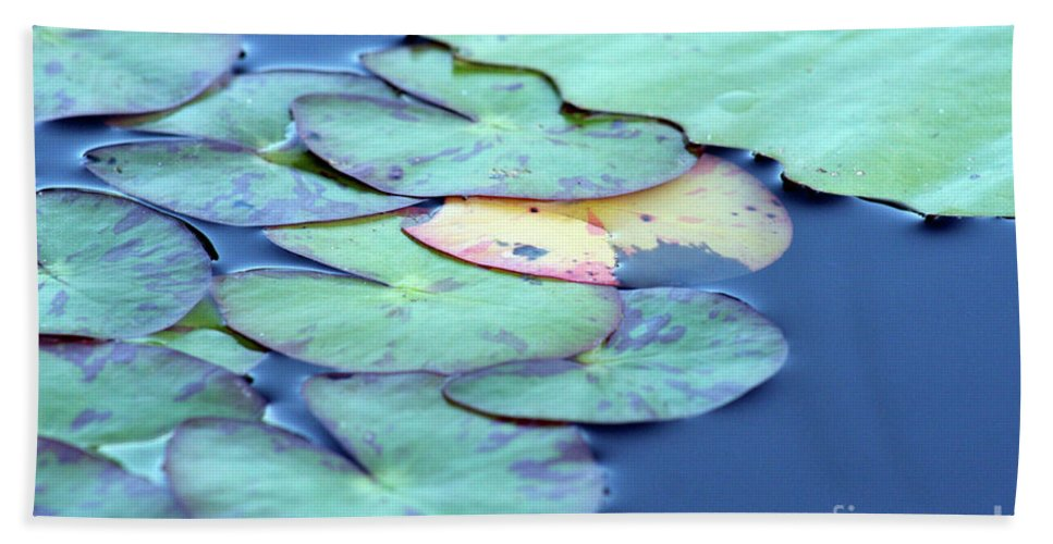 Lily Pad Beach Towel featuring the photograph Variance by Alycia Christine