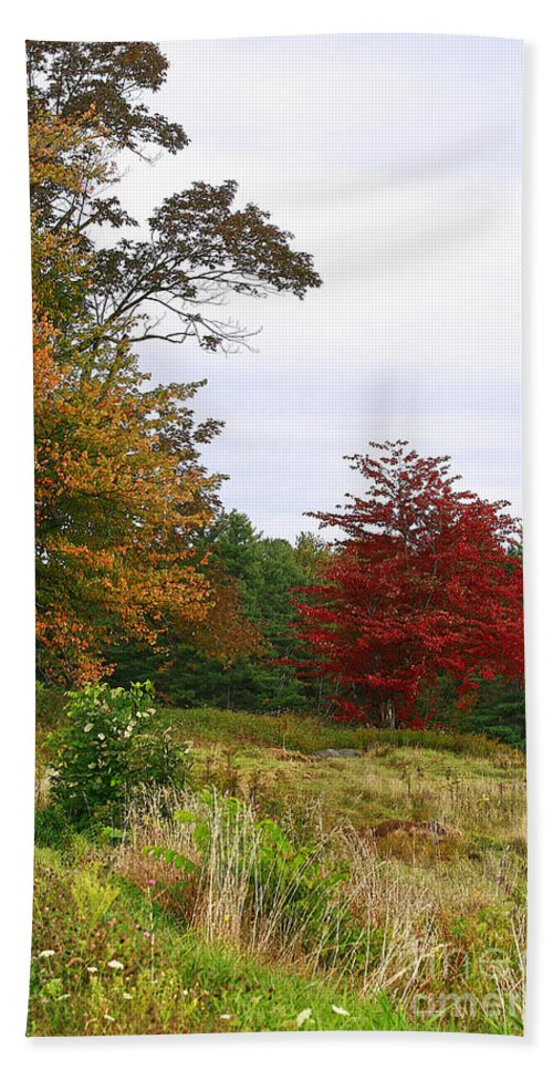 Fall Beach Towel featuring the photograph Vermont Roadside Color by Deborah Benoit
