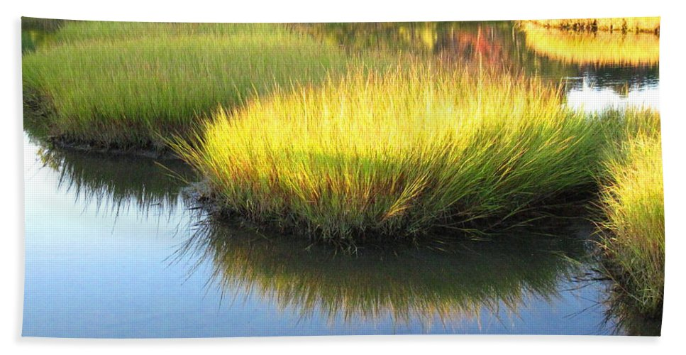 Water Beach Towel featuring the photograph Vibrant Marsh Grasses by Sybil Staples