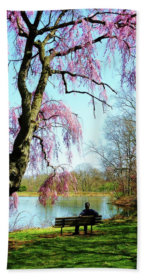 Spring Beach Towel featuring the photograph View Of The Lake In Spring by Susan Savad