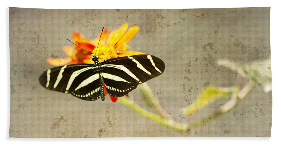 Zebra Butterfly Beach Towel featuring the photograph Vintage Butterfly by Melanie Alexandra Price
