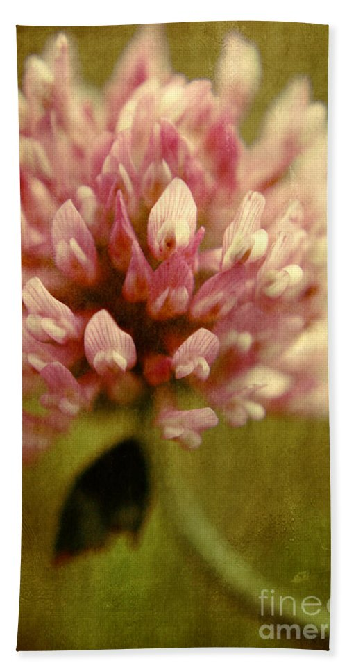 Clover Prints Beach Towel featuring the photograph Vintage Clover by Aimelle