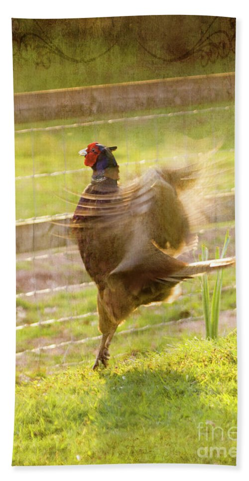 Pheasant Beach Towel featuring the photograph Vintage Pheasant by Angel Ciesniarska