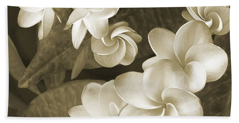Plumeria Beach Towel featuring the photograph Vintage Plumeria by Ben and Raisa Gertsberg