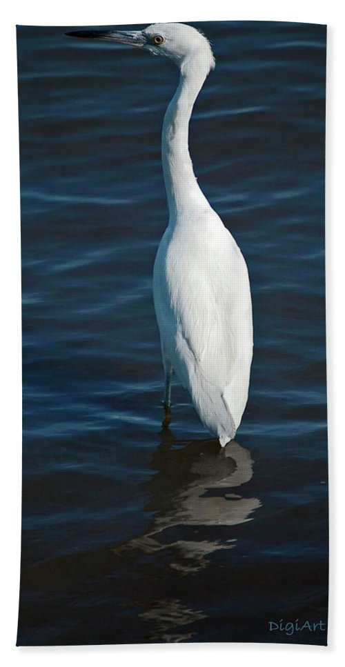 Bird Beach Towel featuring the digital art Wading Reflections by DigiArt Diaries by Vicky B Fuller