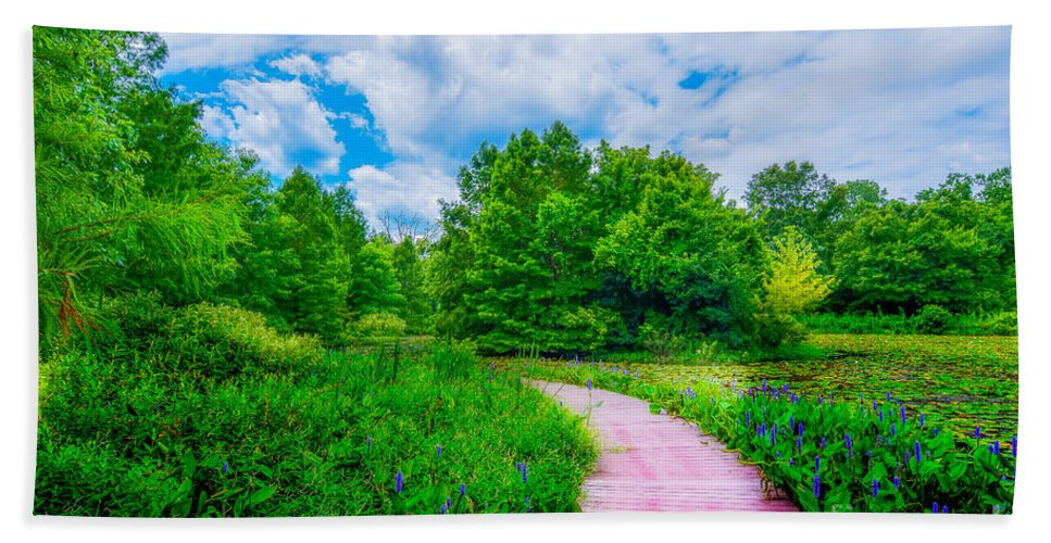 Peggy Franz Beach Towel featuring the photograph Walk Into Beauty Shaw's Nature Reserve Wet Lands by Peggy Franz