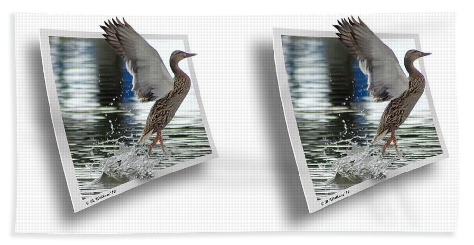 3d Beach Towel featuring the photograph Walking On Water - Gently Cross Your Eyes And Focus On The Middle Image by Brian Wallace
