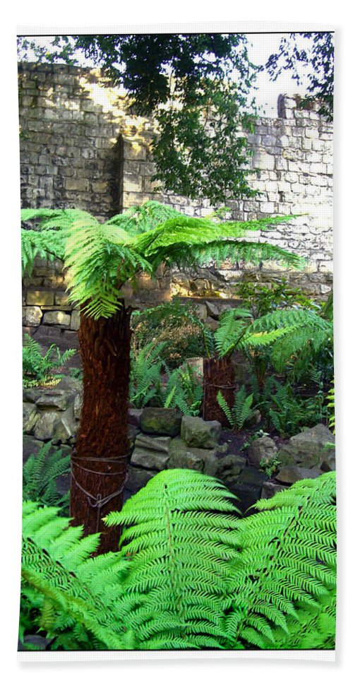 Botanical Beach Towel featuring the photograph Walled Garden by Joan Minchak
