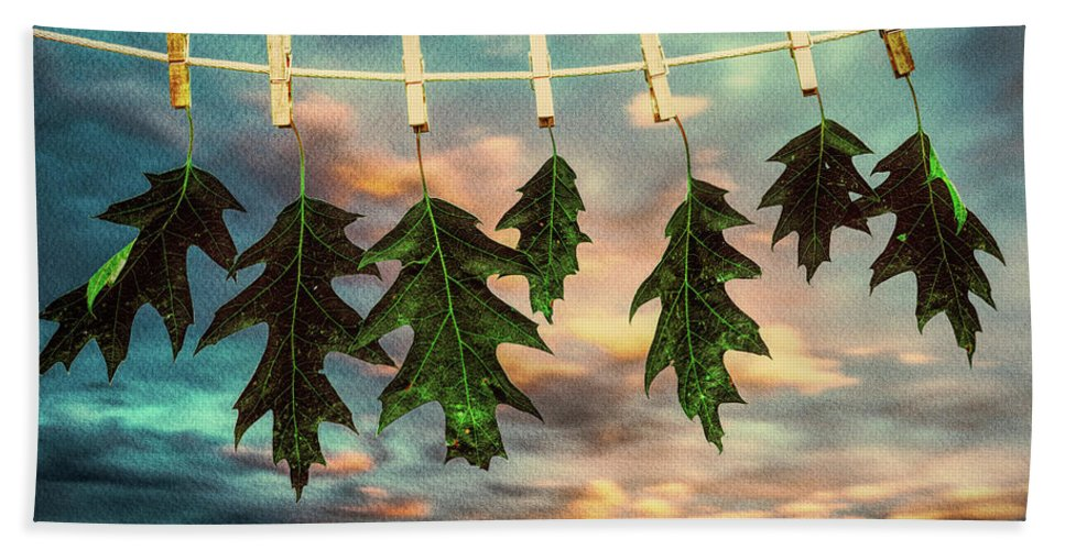 Nature Beach Towel featuring the photograph Wash Day by Bob Orsillo