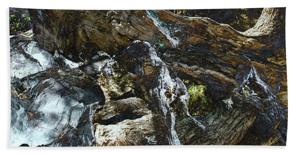 Trees Beach Sheet featuring the photograph Washed Away by Kelly Jade King