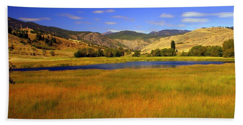 Landscape Beach Towel featuring the photograph Washington Landscape by Marty Koch