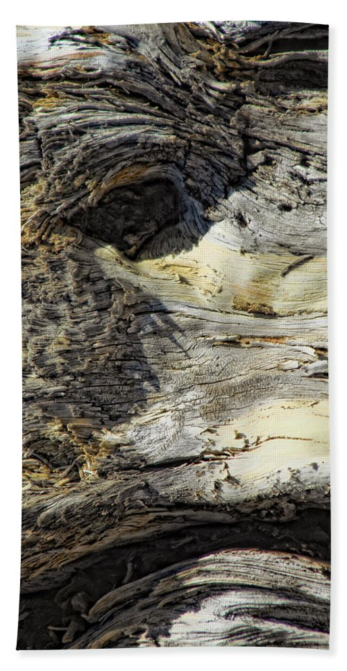 Wood Beach Towel featuring the photograph Watching by Donna Blackhall