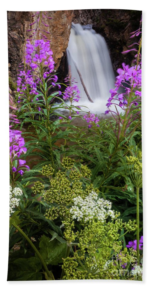 Wildflowers Beach Towel featuring the photograph Water And Flowers by Steven Reed