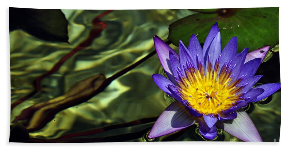 Clay Beach Towel featuring the photograph Water Floral by Clayton Bruster