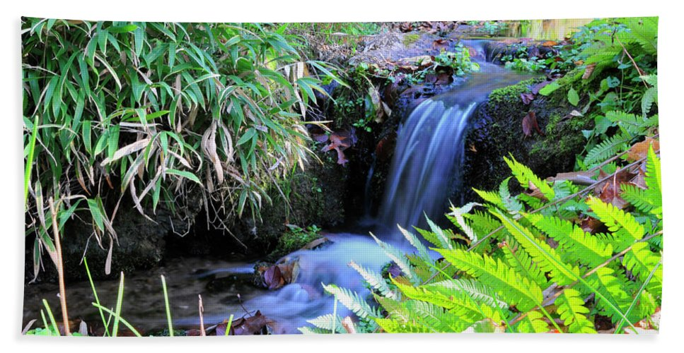 Water. Waterfall Beach Towel featuring the photograph Waterfall In The Fern Garden by David Arment