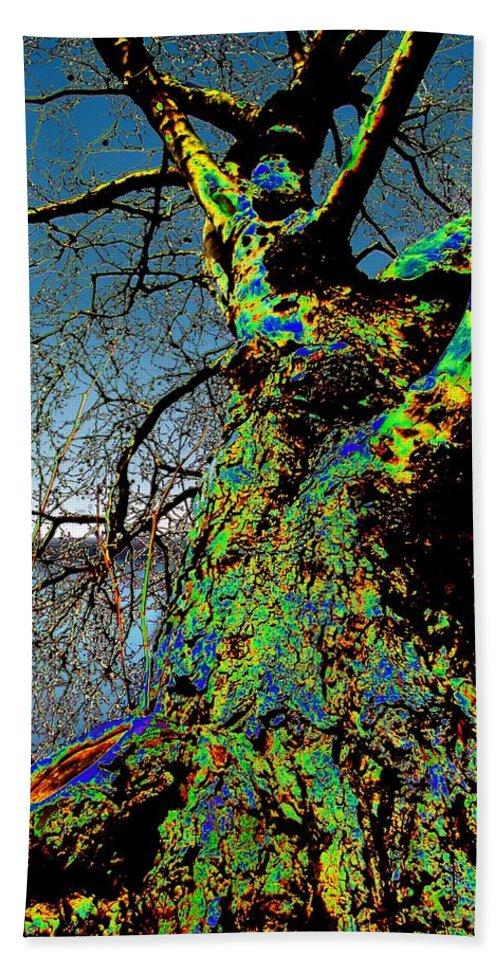 Tree Beach Towel featuring the photograph Waters Edge by Tim Allen