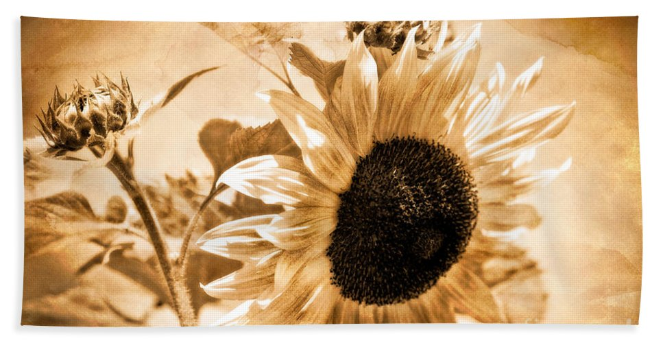 Aged Beach Towel featuring the photograph Weathered Beauty by Venetta Archer