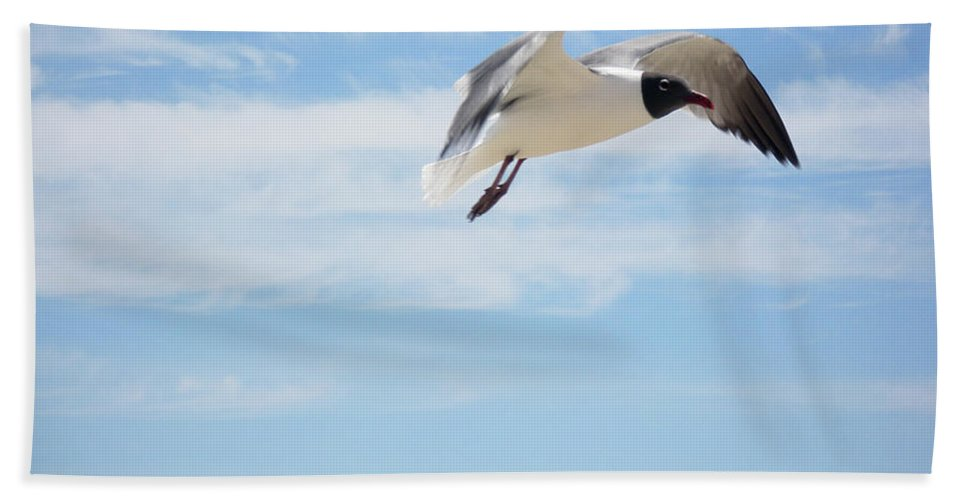 Seagull Beach Towel featuring the photograph Weightless by Mother Nature