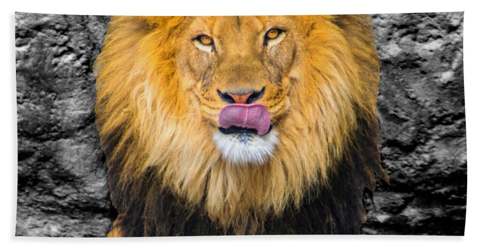 Big Cat Beach Towel featuring the photograph What's For Breakfast? Soc by Robert Edgar