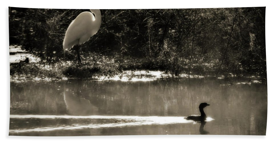 American Egret Beach Towel featuring the photograph When The Morning Fog Lifted by Steven Sparks
