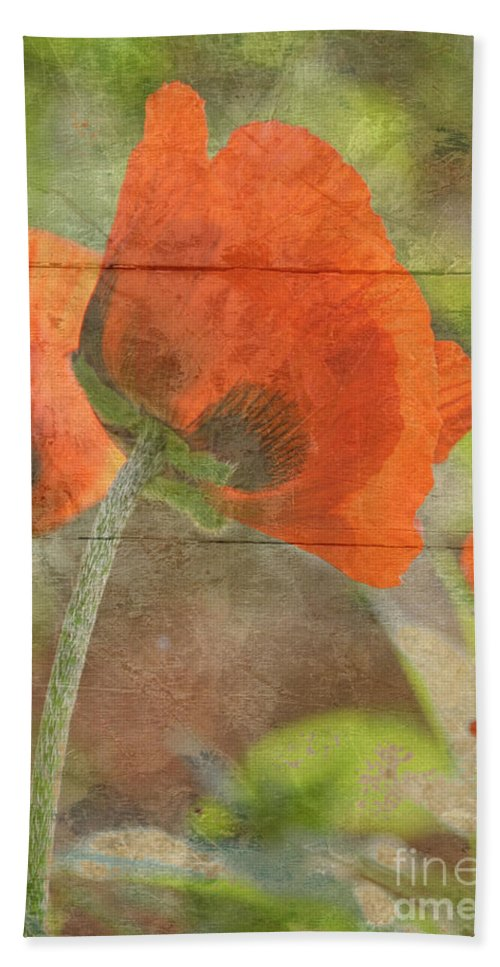 Poppy Beach Towel featuring the photograph When by Traci Cottingham