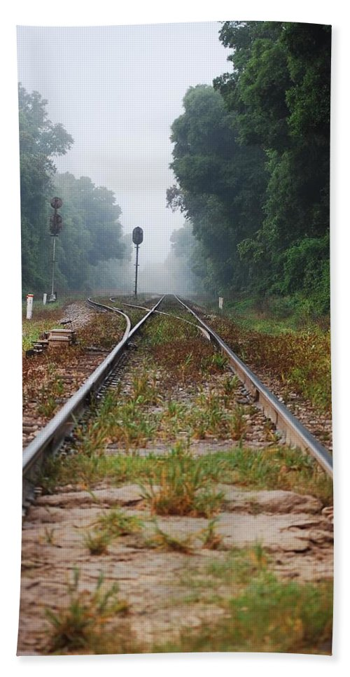 Railroad Tracks Beach Towel featuring the photograph Which Way by Robert Meanor