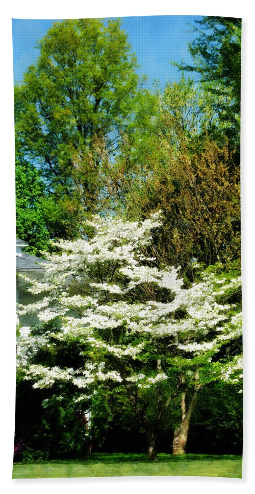 Spring Beach Towel featuring the photograph White Flowering Tree by Susan Savad