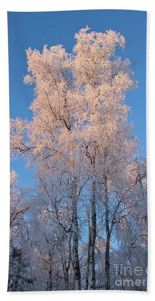 Ice Beach Towel featuring the photograph White On Blue by Rick Monyahan