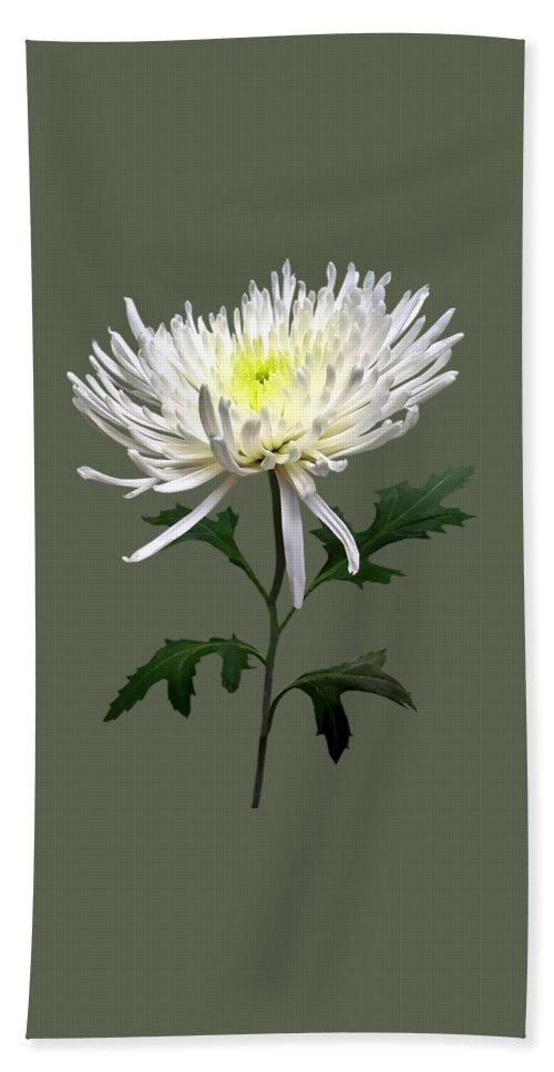 Chrysanthemum Beach Towel featuring the photograph White Spider Mum by Susan Savad