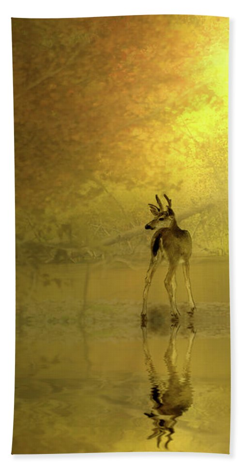 Buck Beach Towel featuring the photograph A Silent Autumn Morning by Diane Schuster