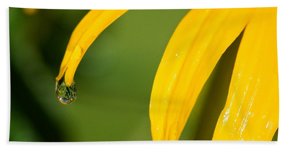 Lisa Knechtel Beach Towel featuring the photograph Whole World Water Drop by Lisa Knechtel