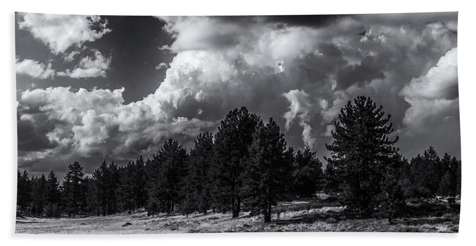 Thomas Gartner Beach Towel featuring the photograph Wild-beauty by Thomas Gartner