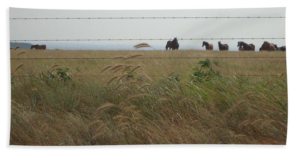 Horses Beach Towel featuring the photograph Wild Horses by Brandy Herren