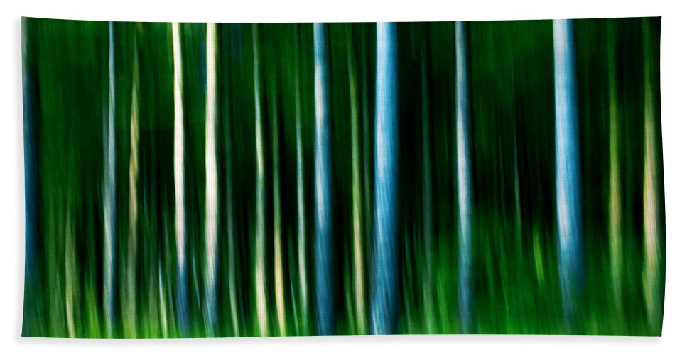 Abstract Beach Towel featuring the photograph Wild Stripes by Dorit Fuhg