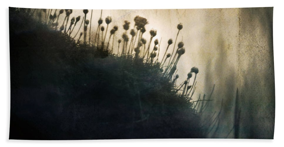 Grass Beach Towel featuring the photograph Wild Things - Number 1 by Dorit Fuhg
